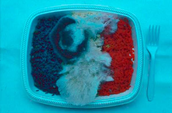 FOOD SITUATION FOR A PATRIOTIC BANQUET - Bandera francesa